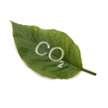 Экологически чистый